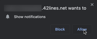 Browser Notification Confirmation Popup Allow Button